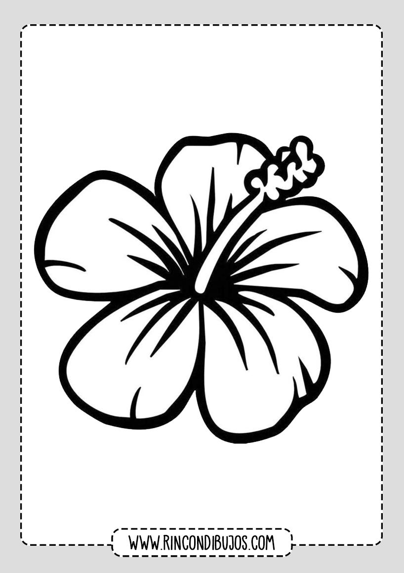Colorear Dibujos de Flores Bonitas