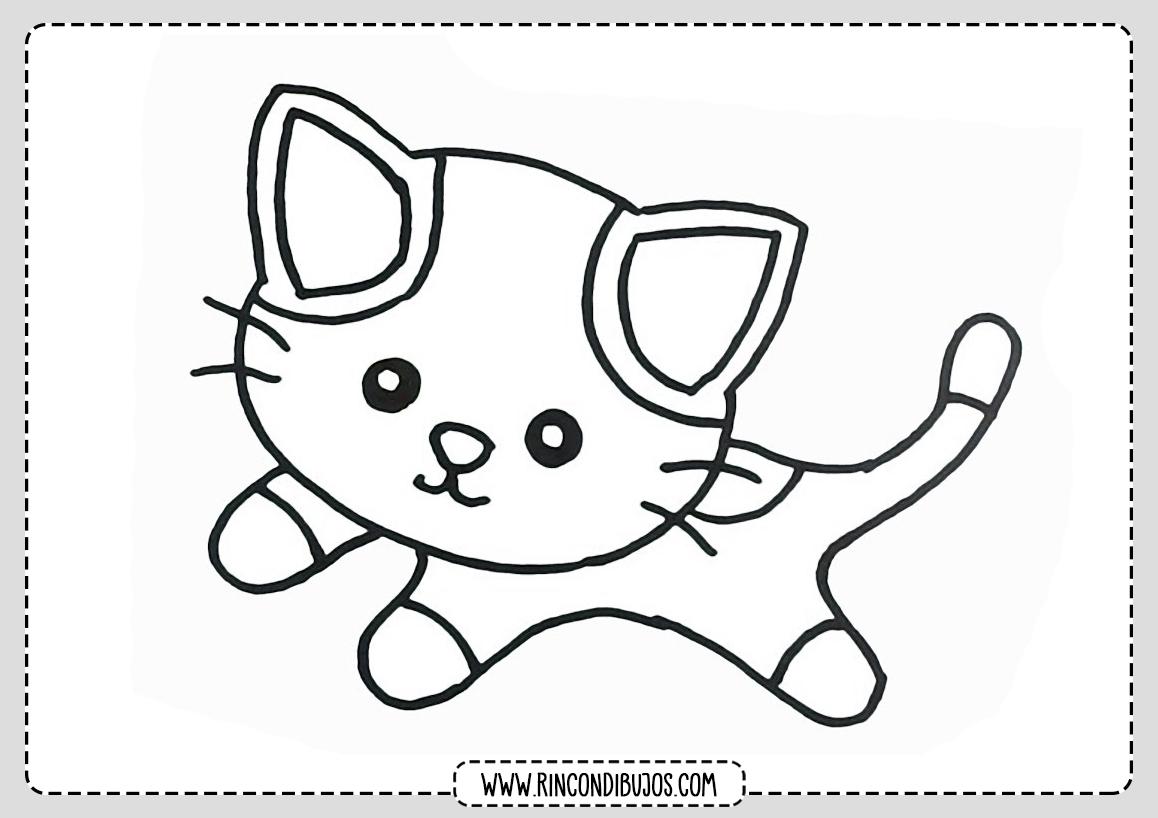 Dibujos Faciles Gatos Colorear