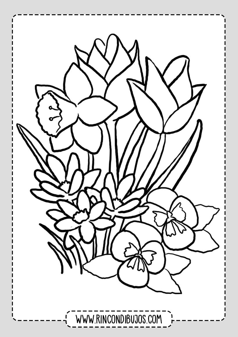 Dibujos de Flores Lindas para pintar