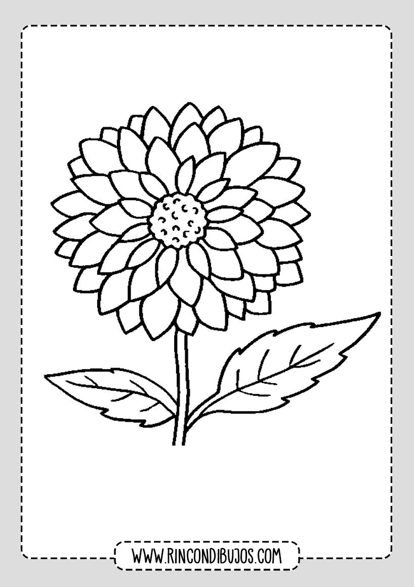 Dibujos de Flores colorear