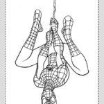 Dibujos de Spiderman Colgado