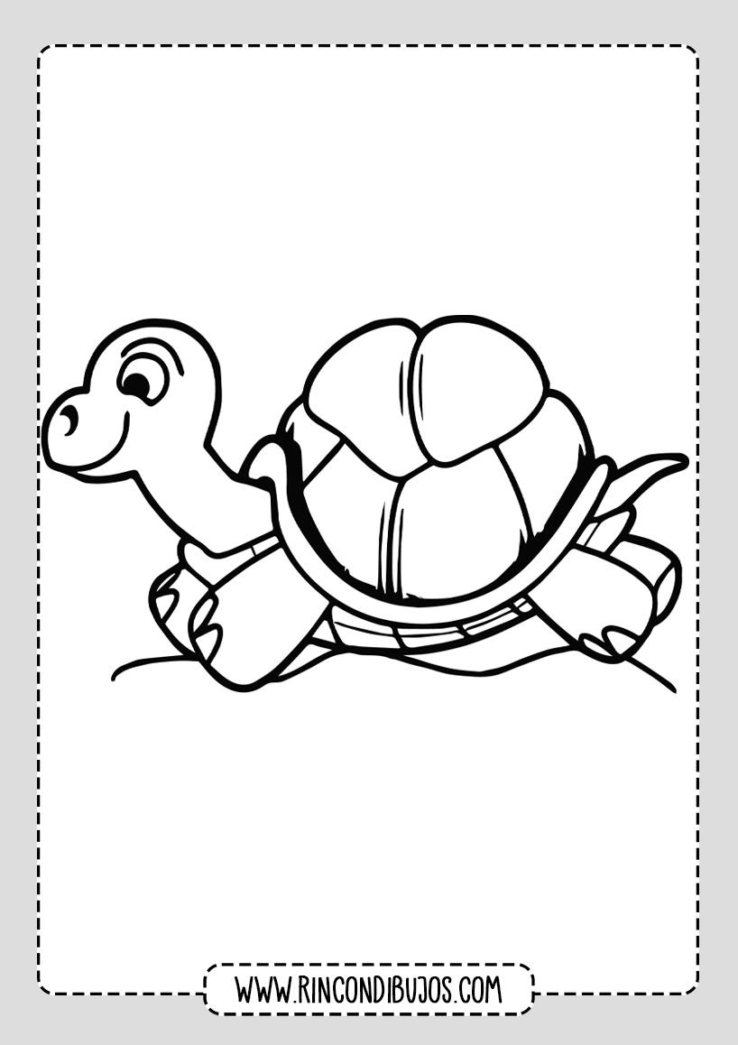 Dibujos de Tortugas Bonitos para colorear