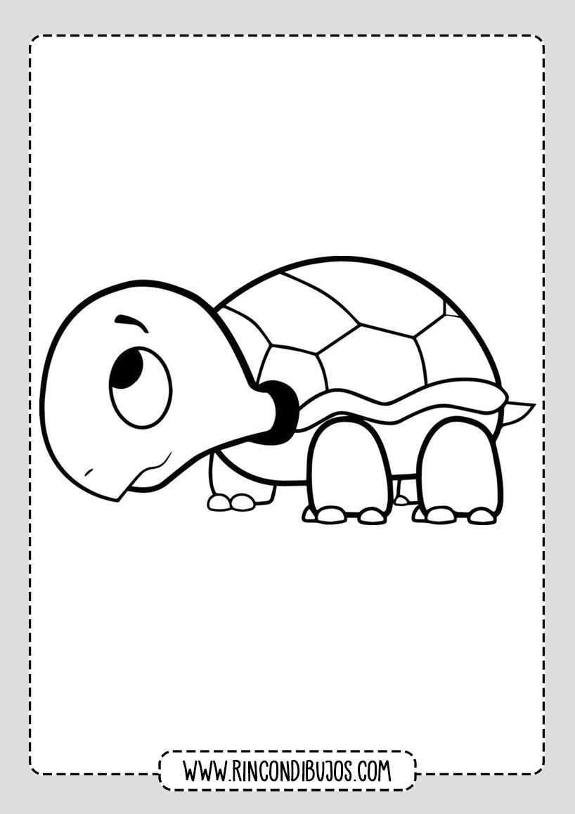 Dibujos de Tortugas Kawaii Colorear