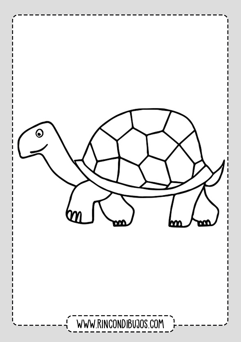 Dibujos de Tortugas para colorear Gratis