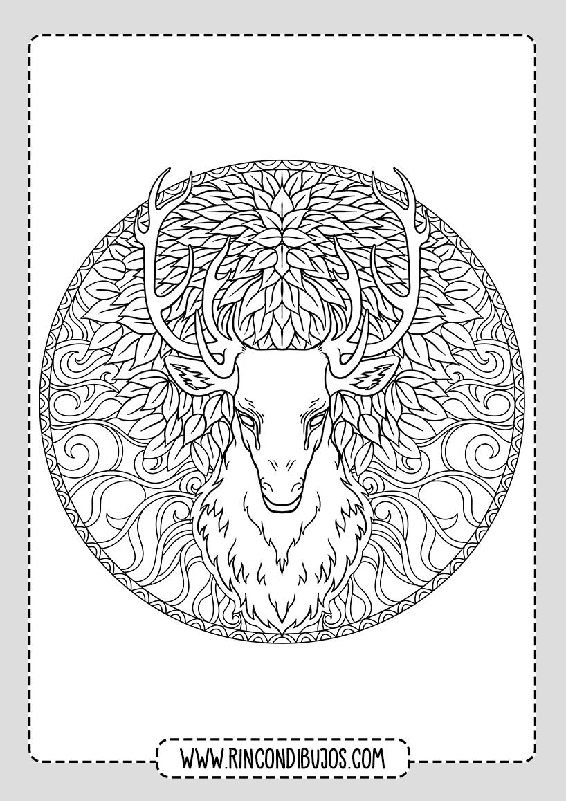 Mandalas de Animales ciervo para colorear