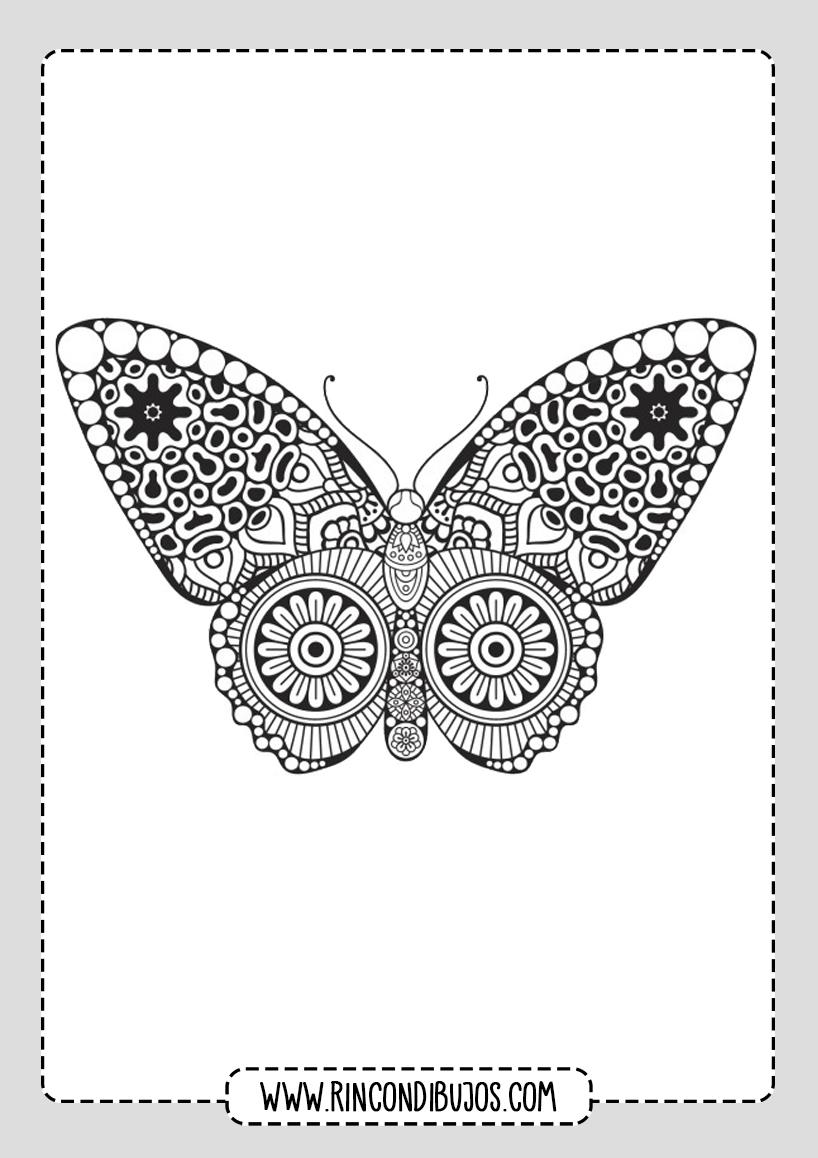 Mandalas de Mariposa para colorear