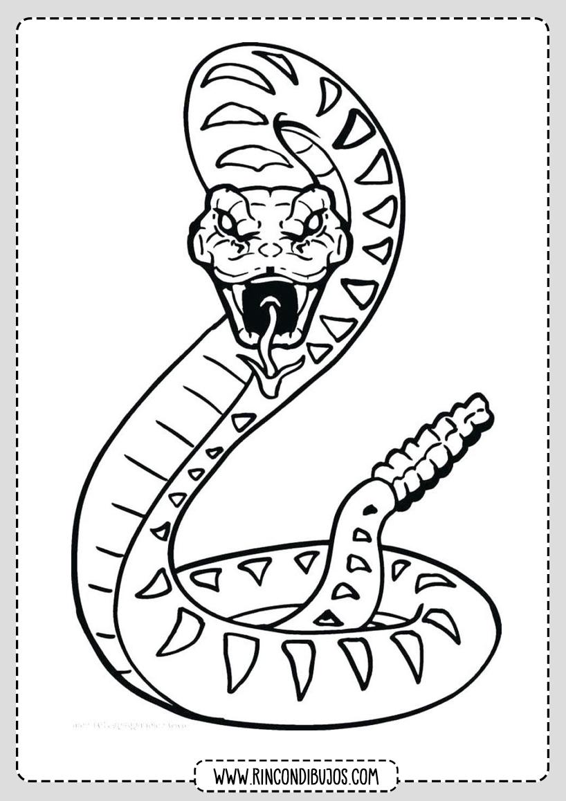 Serpiente Cascabel Para Colorear