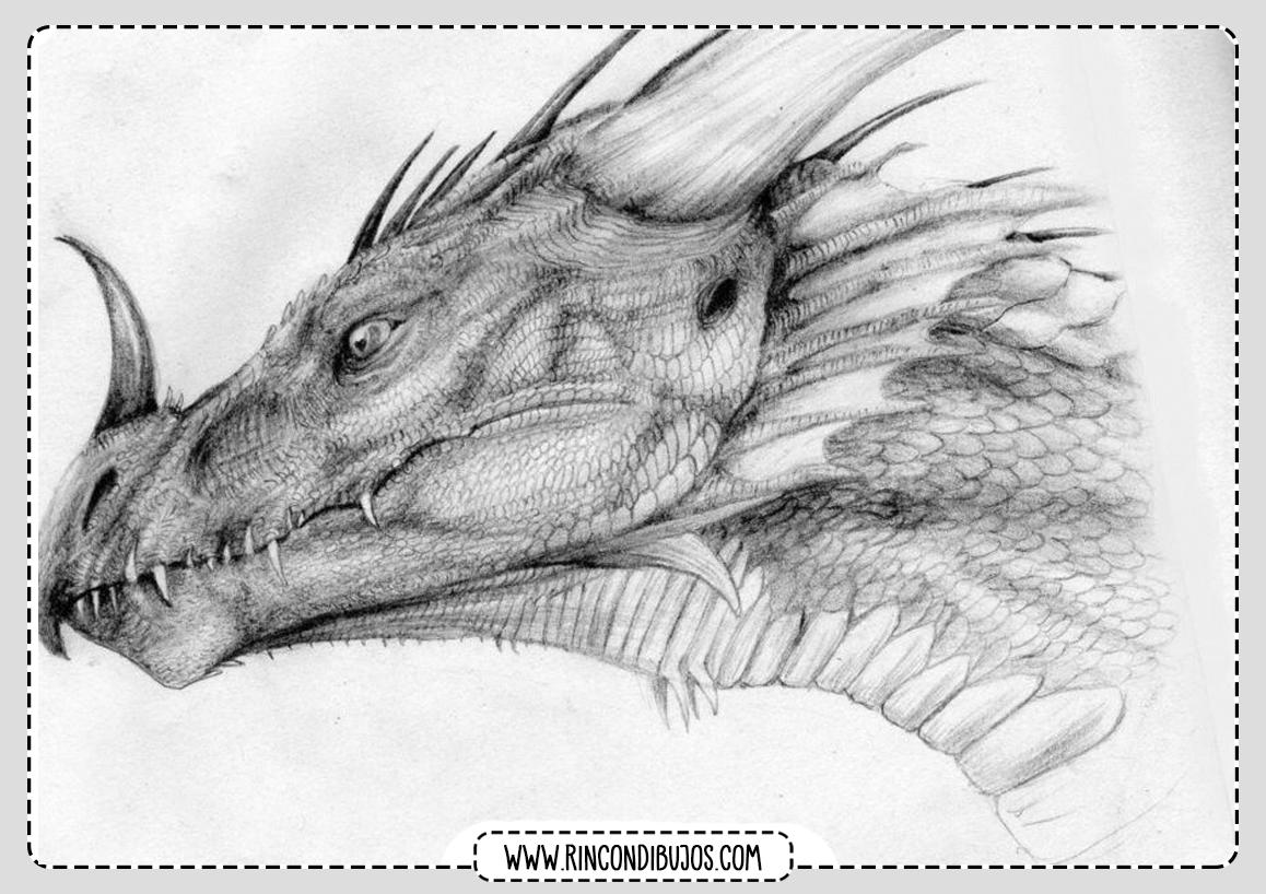Dibujo Cabeza de Dragon para Colorear