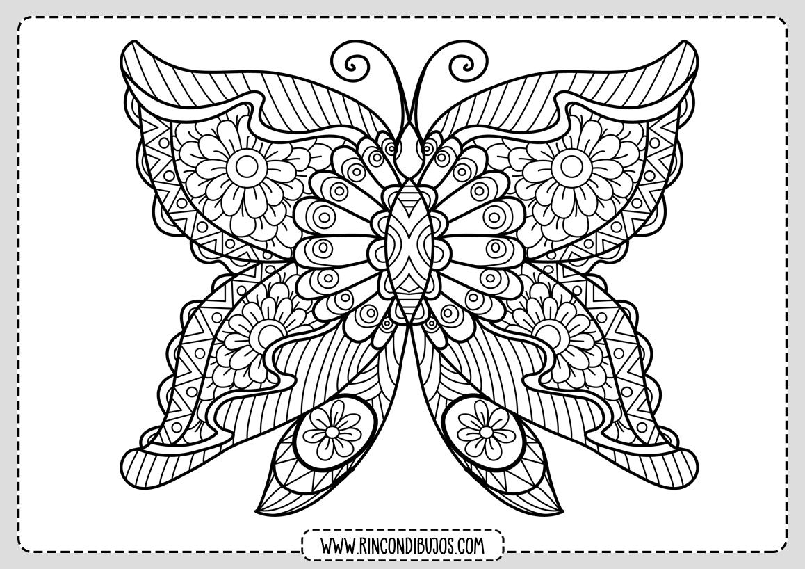 Dibujo Mariposa Bonita para Colorear
