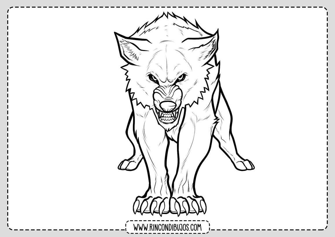 Dibujo de Lobo Colorear