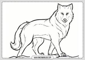 Dibujo de Lobo para colorear