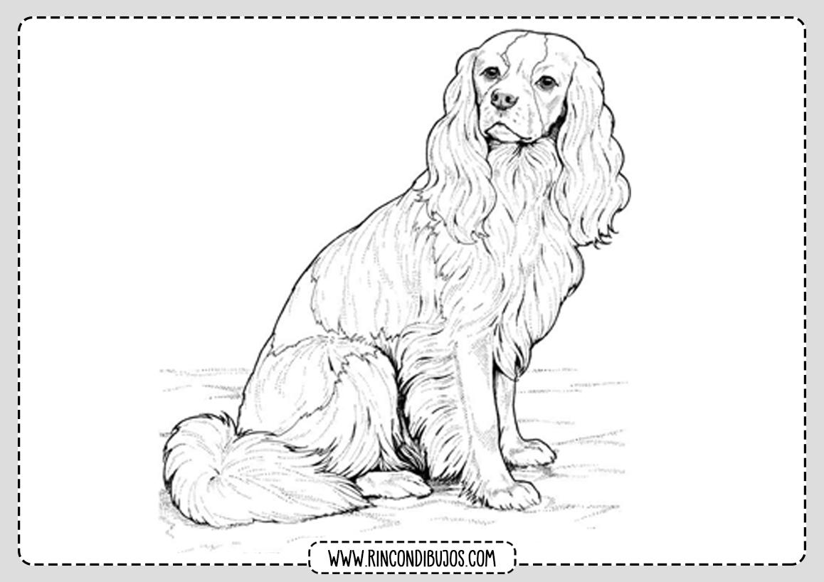 Dibujos Faciles de perro