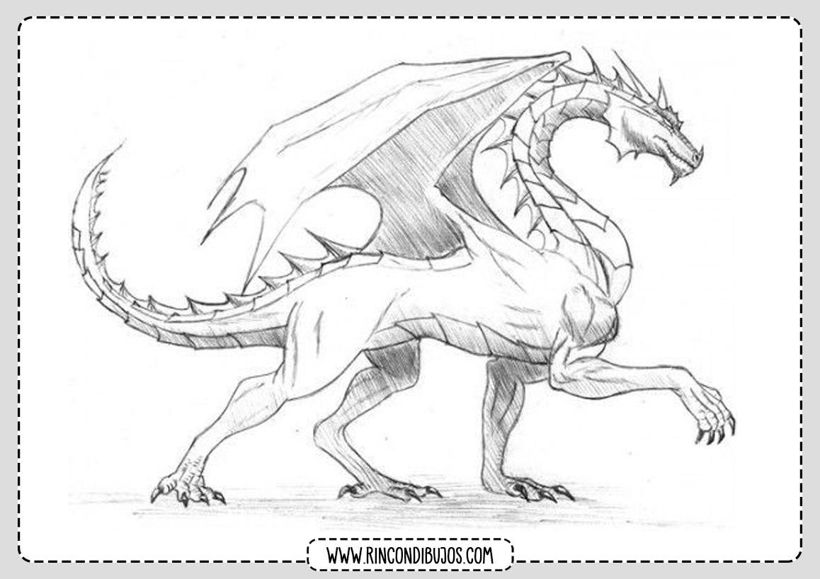Dragon para Colorear