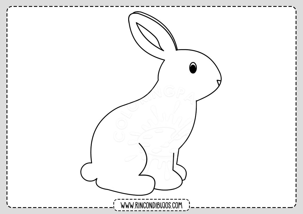 Facil Dibujo de conejo Colorear