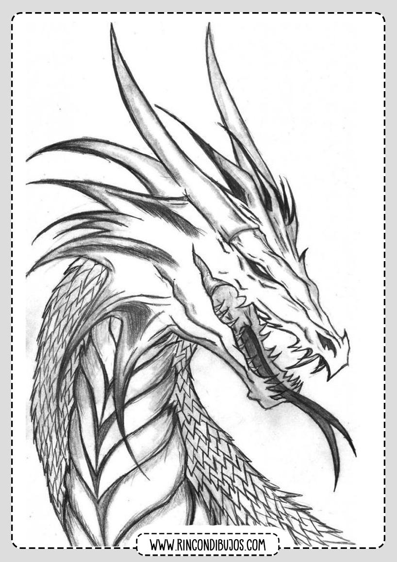 Impresionante Dibujo de Dragon