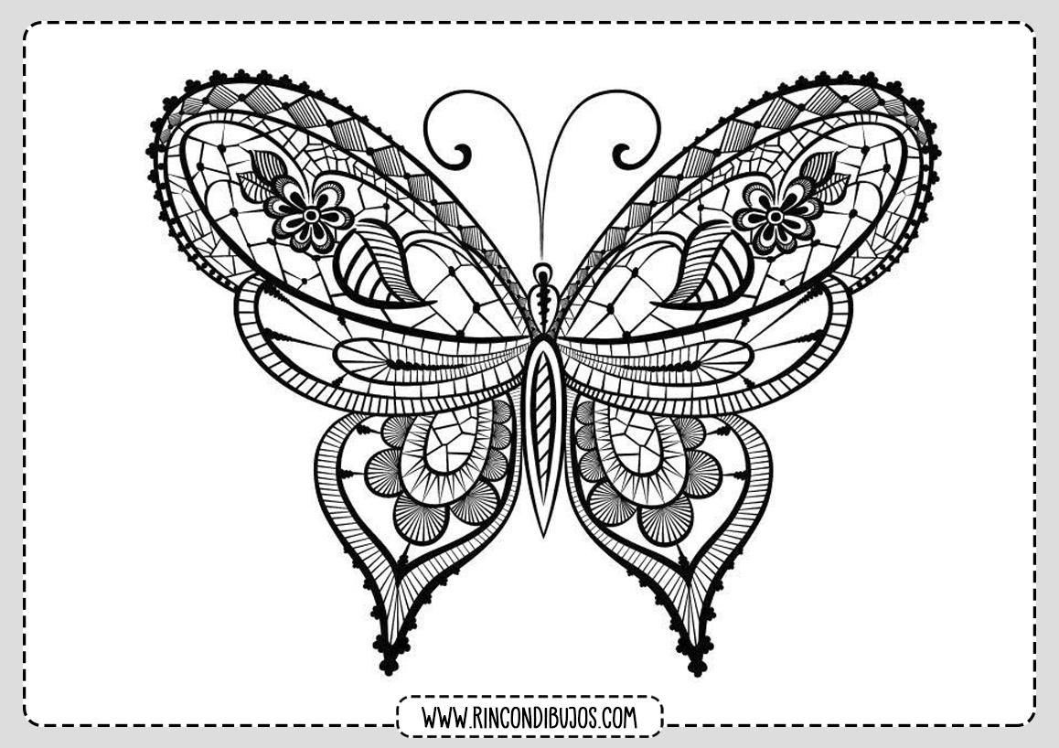 Mariposa Bonita Para Colorear