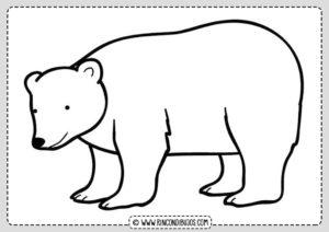 Dibujo Oso Polar