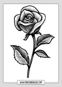 Dibujos de Rosa Bonita