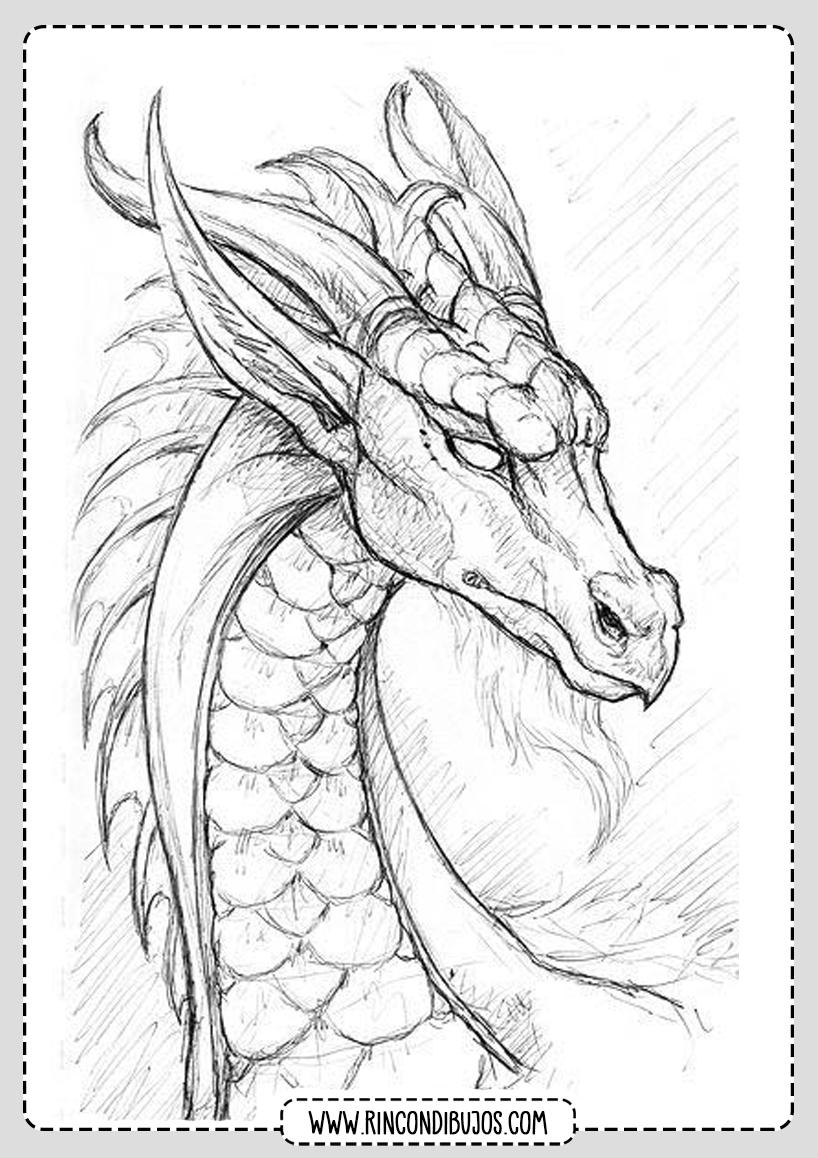 Cabeza de Dragon para Colorear