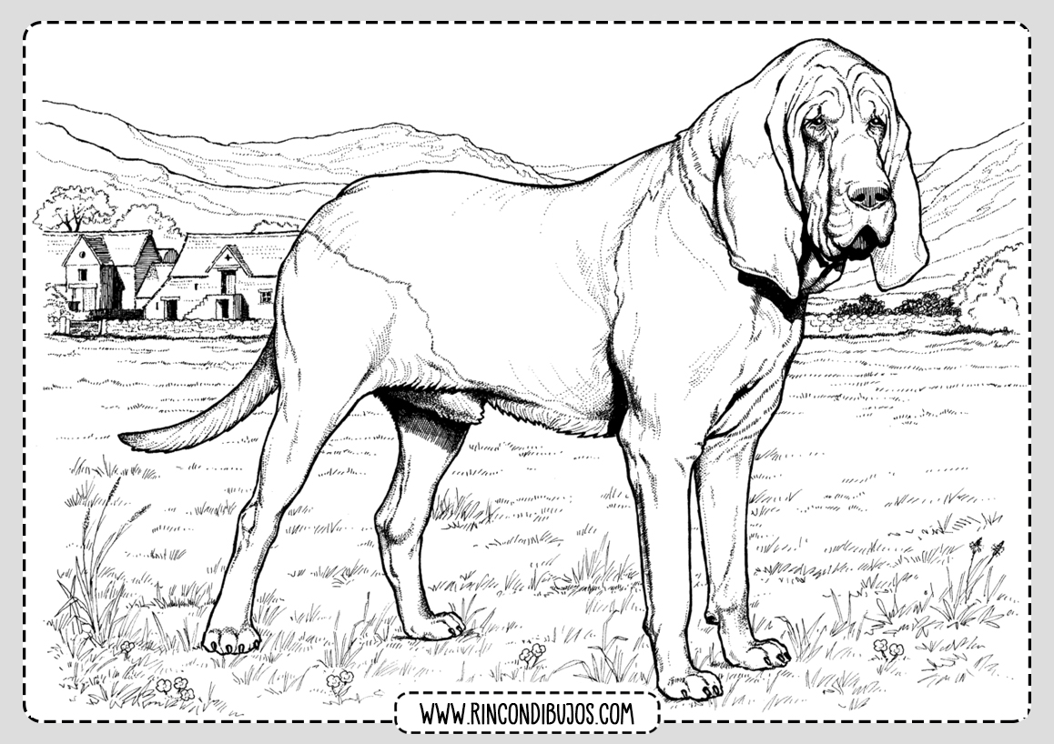 Como Colorear un Dibujo de Perro
