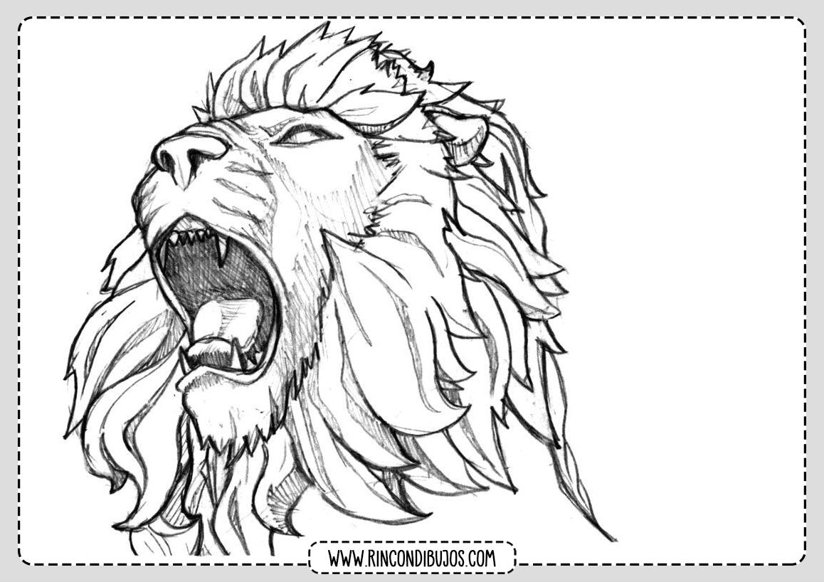 Dibujo Leon para Pintar y Colorear
