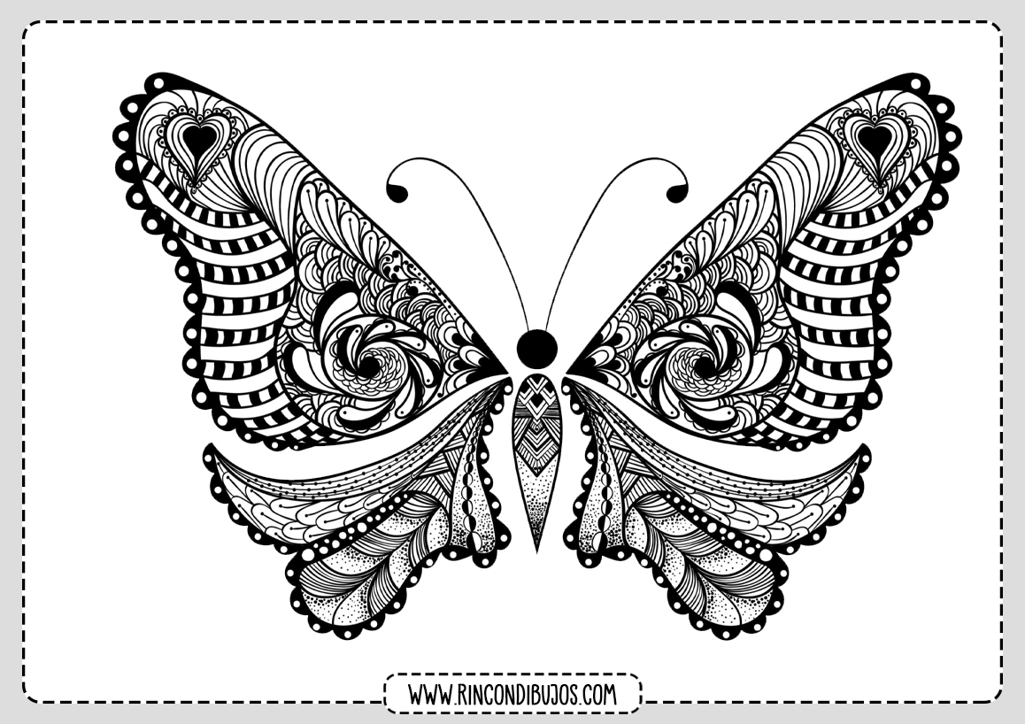 Dibujo de Mariposa Colorear