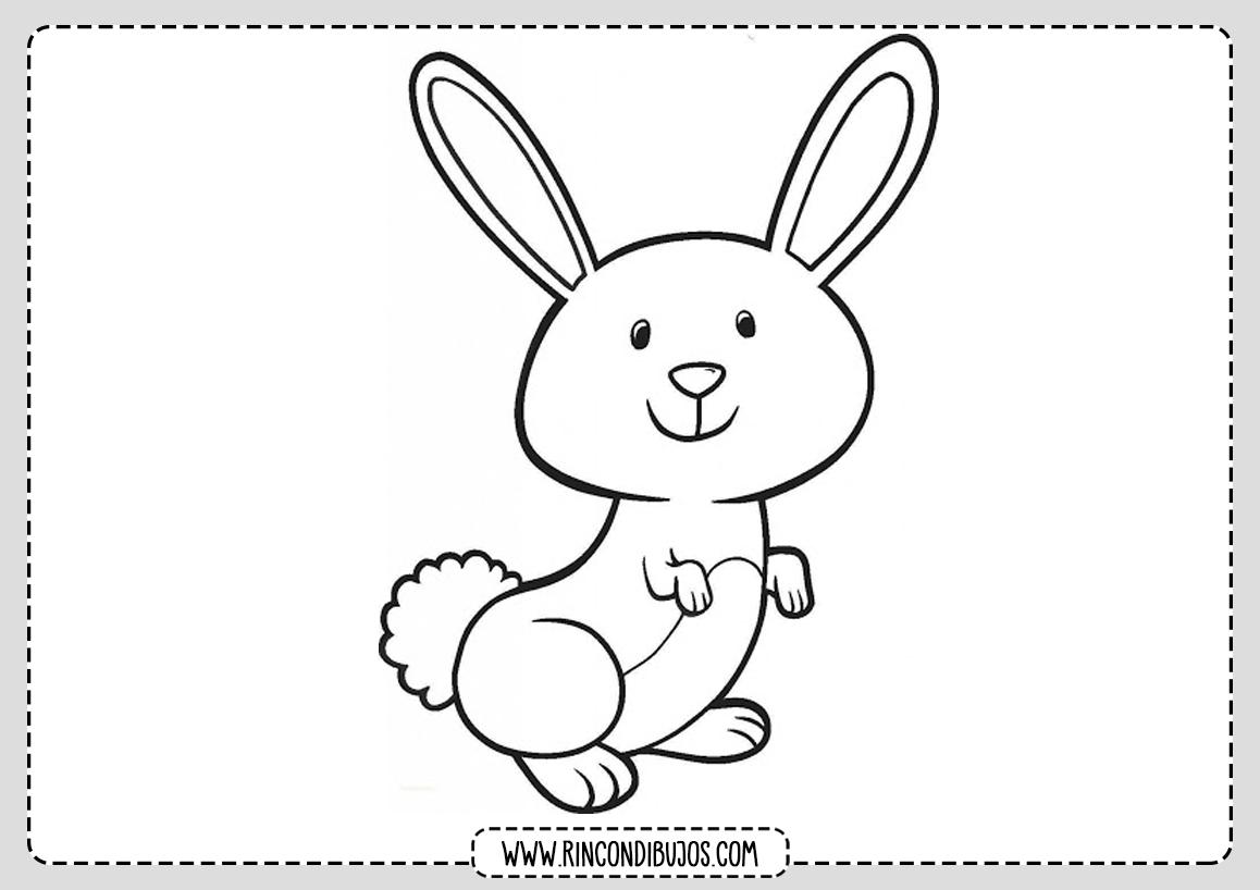 Dibujo de conejo Facil para colorear