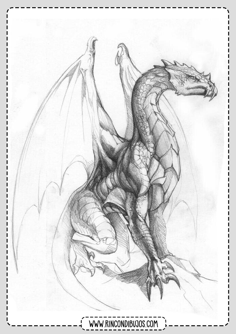 Dragon Alado para Colorear