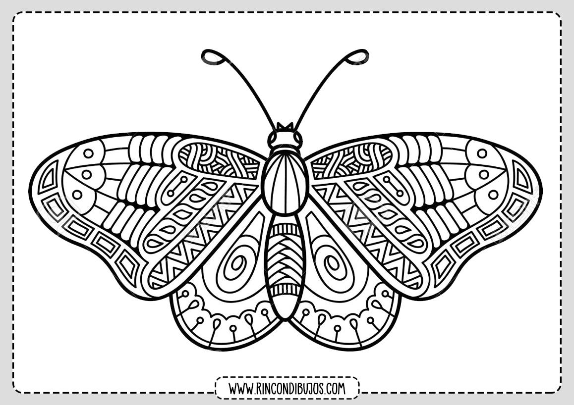 Mariposas Mandala